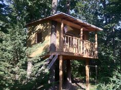 The Boys Tree House in the Summer Forts, Treehouse, Spaces, House Styles, Summer, Kids, Young Children, Summer Time, Boys
