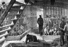 Caged convicts on a ship bound for Australia. The average journey time to the penal colony was 102 days World History, Family History, Van Diemen's Land, First Fleet, Penal Colony, Botany Bay, American War, First Contact, Fantasy