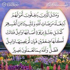 ٢٦٥- آل عمران