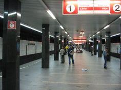 Había una estación de metro que se llamaba I.P. Pavlova