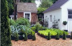 kitchen garden pictures | small potager garden, close to kitchen, raised beds