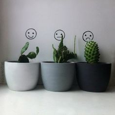 aesthetic, cute, green, grunge, pale, plant, plants, soft grunge, tumblr, white