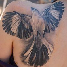 mockingbird tattoo - Google Search                              …