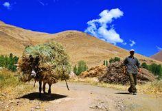 The Kurdish Villager by Nesiho  Asiraki on 500px  Kurdistan