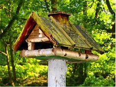 Ein großes Silo-Vogelhaus im Eigenbau - schon ein wenig vom Wetter gegerbt