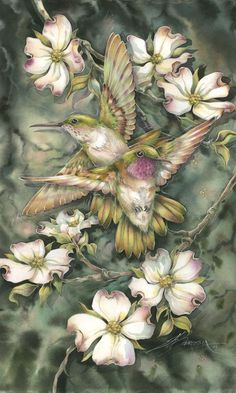 jody bergsma hummingbirds and dragonflies art images - Yahoo Image Search…