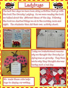 Golden Gang Kindergarten: Bugs and Insects. There are some fun ladybug activities on this site Eric Carle, Classroom Themes, Classroom Activities, Classroom Projects, School Themes, Insect Activities, Science Activities, Educational Activities, Grouchy Ladybug