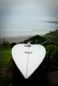 surfboards, guest books, new zealand surfing beaches, the wave, bridal gown, beach weddings, rock, bride, surfboard guest