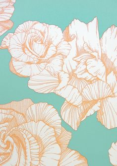 Rose Wallpaper A hand illustrated style contemporary rose wallpaper featuring coral outlined flowers on a turquoise background.