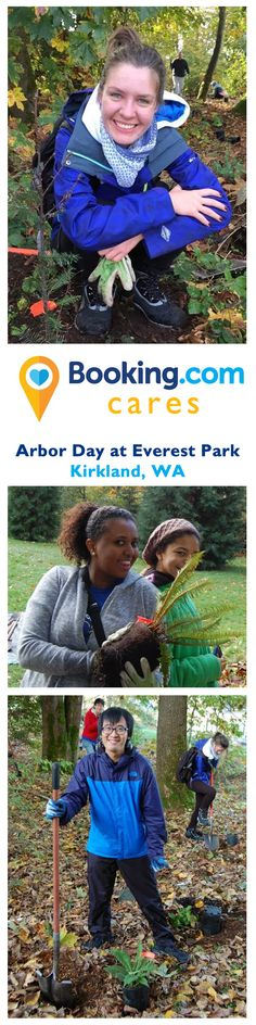 Booking.com employees took part in Kirkland's annual Arbor Day Celebration - Saturday, November 8, 2014 at Everest Park.  Booking Cares volunteers planted native trees, shrubs and ground cover, and removed aggressive invasive plants