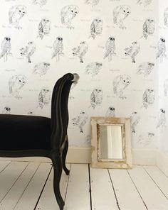 Owl wallpaper.