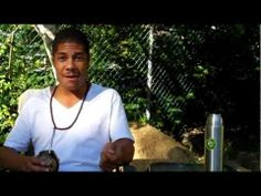 ▶ Yerba Mate & The Pursuit of Happiness (The Happy Person's Drink) - YouTube