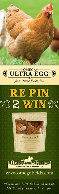 Omega Fields Ultra Egg  Credit to Fresh Eggs Daily® , check them out here: fresh-eggs-daily.blogspot.com