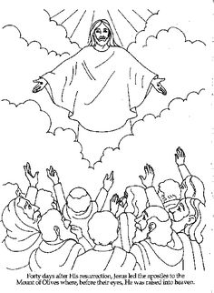 1000 Images About Kids Bible On Pinterest Bible Gospel Light Coloring Pages