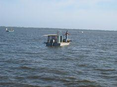 Oyster Harvesting on St. George Island