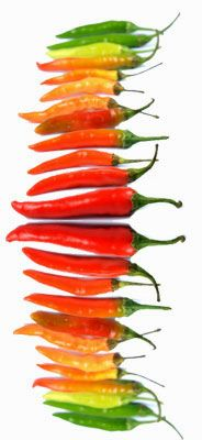 rainbow of chiles Colorful Vegetables, Fruits And Veggies, Capsicum Annuum, Spices And Herbs, Eat The Rainbow, Food Nutrition, Wellness Fitness, Stuffed Hot Peppers, Chilis