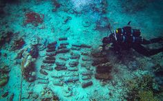 NZ divers help clear WWII bombs in Solomons