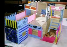 DIY popsicle hamster house (not done yet) and I used non toxic paint (: