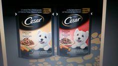 Comida perros Cesar
