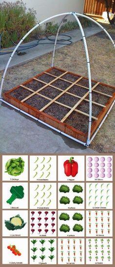 Square Foot Gardening Plan #Gardening