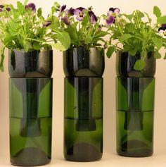 Living Thrifty: How to Upcycle Glass Bottles Reuse Wine Bottles, Wine Bottle Planter, Recycled Glass Bottles, Wine Bottle Art, Diy Bottle, Wine Bottle Crafts, Glass Jars, Cut Bottles, Beer Bottles