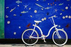 Biciclettica White model