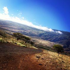 The road past Hana in Maui - stunning!!
