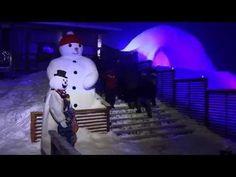 Video: Snowman World in Santa Claus Village in Rovaniemi in Lapland Finland - Winter World Arctic Circle - Finnish Lapland Santa Claus Village, Lapland Finland, Ice Bars, Arctic Circle, Snow And Ice, Winter Fun, Snowman, Snoopy, Activities