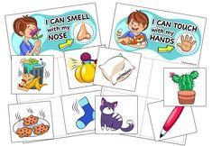 Five Senses Sorting Activity for Preschool, Pre-K, and Kindergarten Students Five Senses Preschool, 5 Senses Activities, My Five Senses, Preschool Science Activities, Sorting Activities, Free Preschool, Preschool Themes, Play Activity, Autism Activities