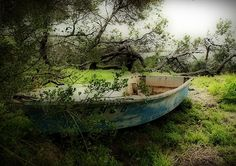 Marooned by Jon Staniland  Little row boat with a huge hole in it discarded in the bush and left to rot.  Point Peron Western Australia.