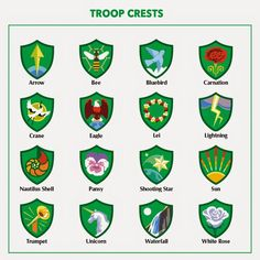 Troop Leader Mom: Getting Started with Daisy Girl Scouts (and Brownies Too!): Brownies: Choosing a Troop Crest