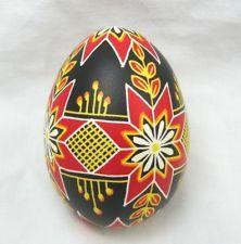 Nice Easter Handpainted blown real Ukrainian Pysanka Pisanka - egg pysanka