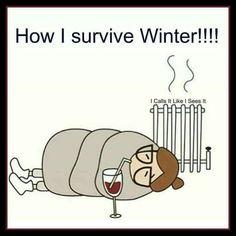 48 Trendy Funny Sayings Wine Hilarious Wine Jokes, Wine Meme, Wine Funnies, Funny Wine, Funny Quotes, Funny Memes, Funny Winter Quotes, Qoutes, In Vino Veritas