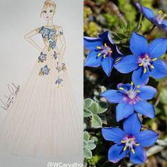 Natureza  Vida, formas, beleza  Flores um dos mais belos sorrisos ja visto.  Sorriso Azul Insta:@WCarvalhooficial