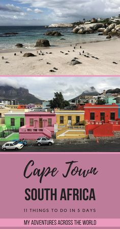 Cape Town is an incredible city. There's a huge variety of things to do in Cape Town, South Africa, that to be fair 5 days are hardly enough to cover them all. In any case, visiting is a must. This post summarizes what to do in Cape Town to enjoy it at its best | Cape Town South Africa photography | via @clautavani #africa #capetown #lovecapetown