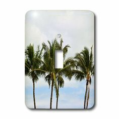 839 Best Light Switch Covers Images Light Switch Covers Abstract