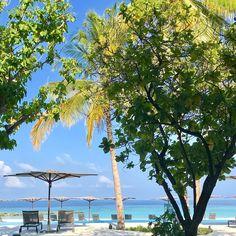 #звезды #темникова 🏖🏝 Счастливого вам дня ♥️#доброеутро #скороновыйподводныйвидос #maldives #stregismaldives   lenatemnikovaofficial