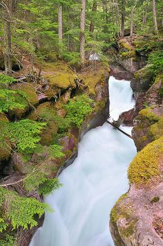 Avalanche Canyon, Glacier National Park (pinned by haw-creek.com)