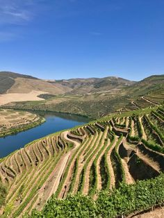 Douro River Valley, the winding, a terraced region that produces the country's beloved port wine. This is Portugal's answer to Germany's romantic Rhine River Douro Portugal, Visit Portugal, Portugal Travel, Sea Activities, Big Sur California, Douro Valley, Dry Stone, Valley View, Sunny Beach
