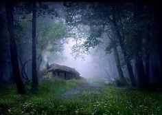 Forest Cottage, Isle of Ulva, Scotland