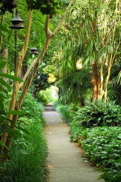 Lush path, Gateway Walk, #Charleston, SC © Doug Hickok All Rights Reserved