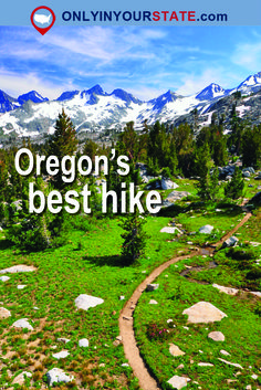 Travel | Oregon | Best Hikes | PCT | Pacific Crest Trail | Wild | Gorgeous | Rugged Landscape | Fitness | Trails | Best Trail In Oregon | Weekend | Summer | Adventures