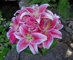 Large Stargazer Lily and Rose Wedding Bouquet