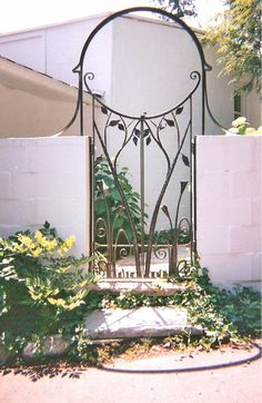 Wrought steel gate and arch with calla lily details.