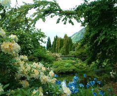 Benmore Botanic Garden #Scotland