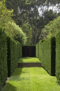 Peter Fudge creates gardens that connect in deep and meaningful ways. Peter has been designing beautiful gardens since Every garden design has… Garden Hedges, Garden Landscaping, Formal Gardens, Outdoor Gardens, Landscape Architecture, Landscape Design, Formal Garden Design, Home And Garden Store, Topiary