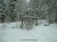 Snow outlines every twig and branch of this romantic archway...and it's formed over rebar bent to shape.  Simple, effective and beautiful...www.bluefoxfarm.com/rebar-for-crafts.html