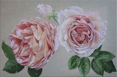 Oil on linen. 91 cm By Kate Waanders 1950s Wallpaper, Still Life Oil Painting, Where The Heart Is, Oil Paintings, Farm House, Roses, Flowers, Plants, Pink