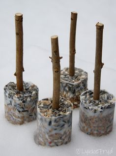 Homemade bird food made with coconut fat. Winter Diy, Winter Crafts For Kids, Diy For Kids, Kindergarten Collage, Kindergarten Crafts, 1st Grade Crafts, Homemade Bird Houses, Bird Food, Snowman Crafts