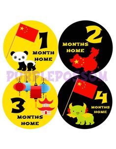 Monthly Adoption Baby Stickers
